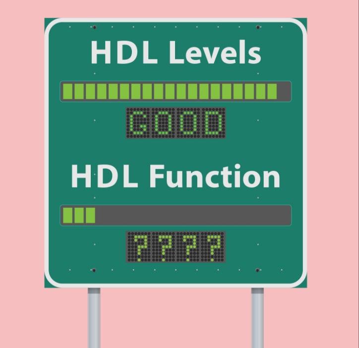 level vs function